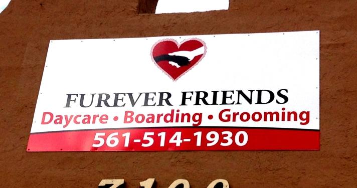 furever-friends