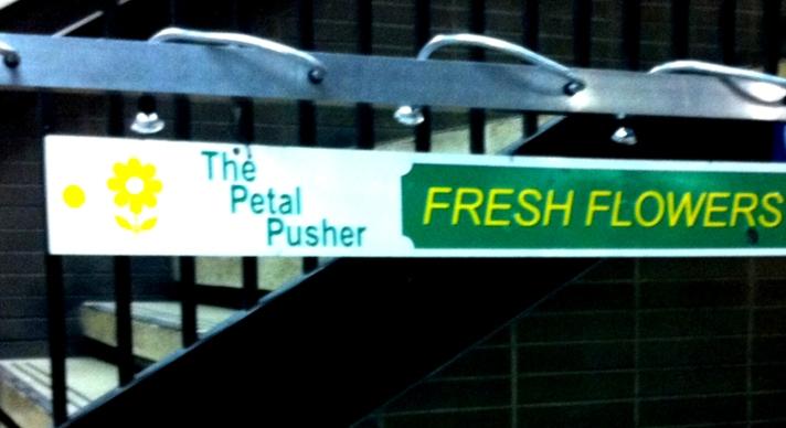 the-petal-pusher