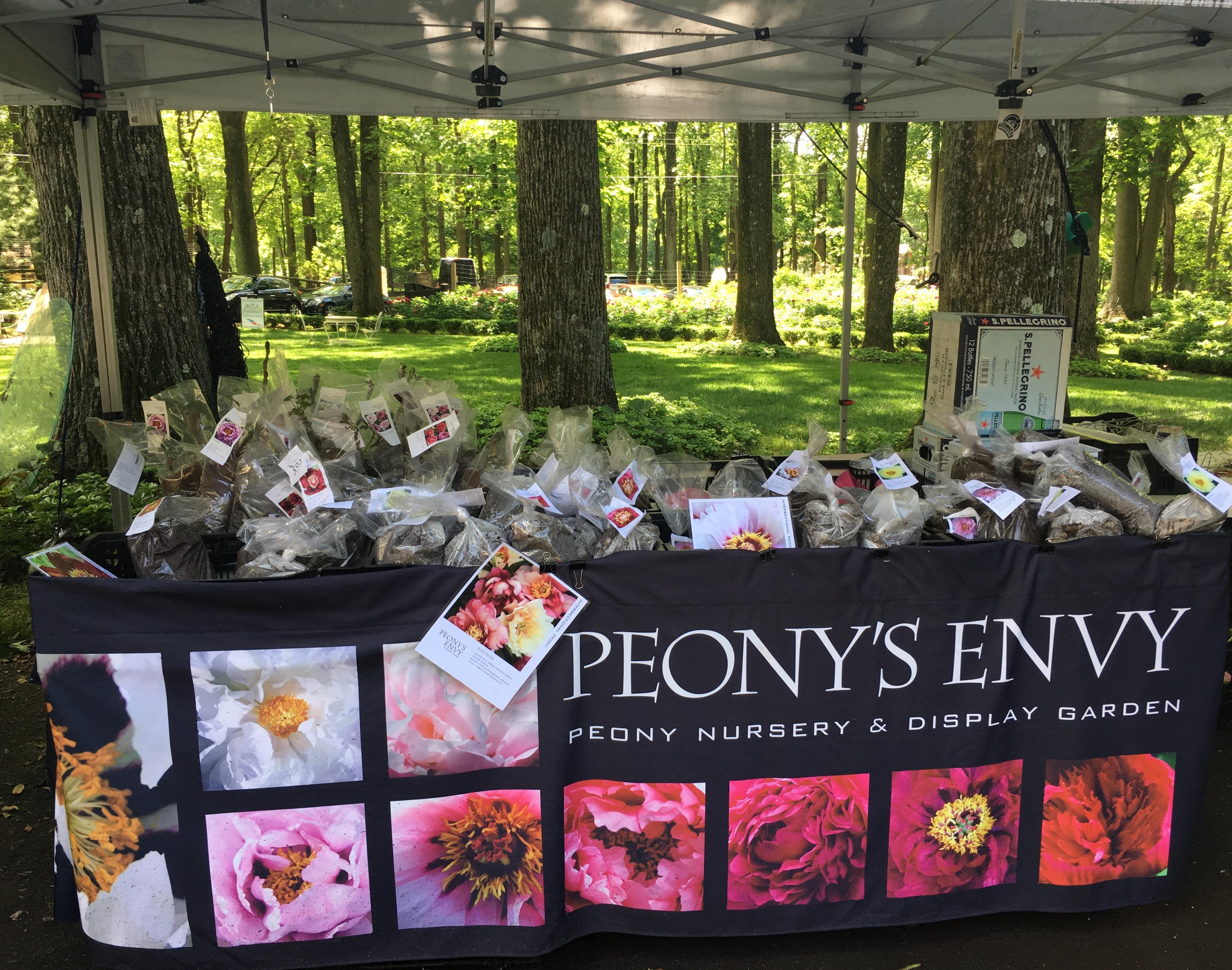 Peony's Envy Bernardsville NJ Lauren Simoes