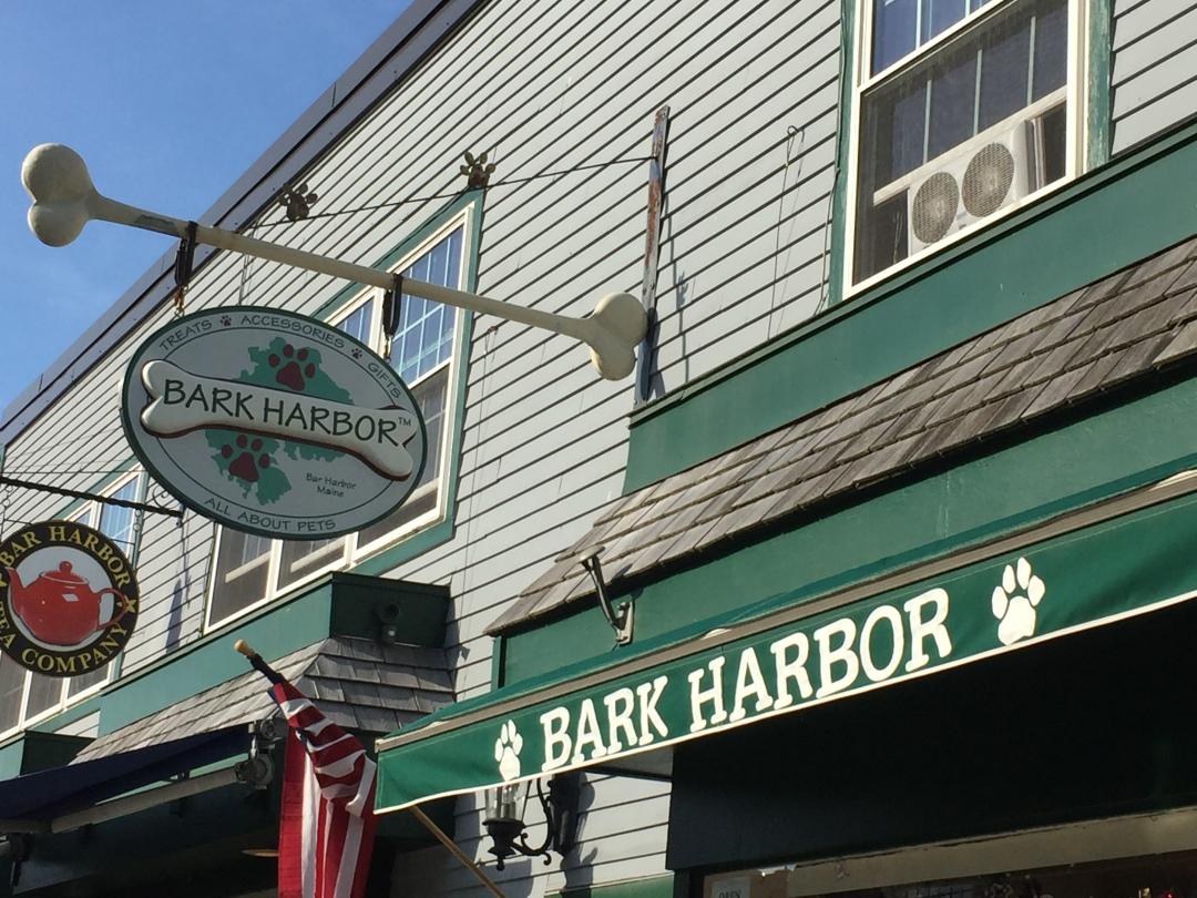 Bark Harbor Lynne Segalle Bar Harbor