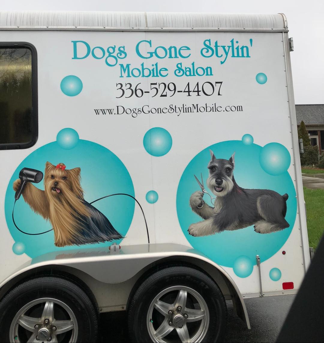dogs-gone-styling-mommy-winston.jpeg